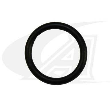 Click to see larger version of O-Ring, Back Cap